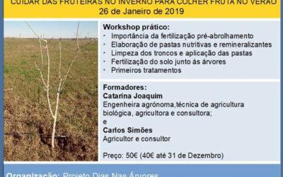Cuidar das Fruteiras no Inverno para Colher Fruta no Verão